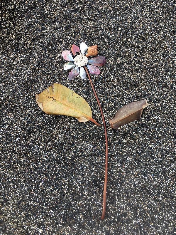 Zoe's nature art. Erromango.