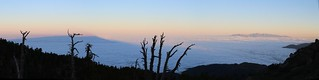 253 The dawn shadow of San Bernardino Peak is on the marine layer clouds to the west from Limber Pine Bench | by _JFR_