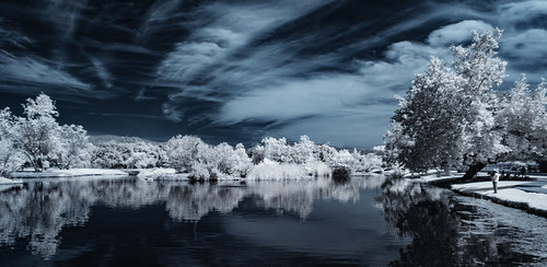 infrared infraredphotography ir convertedinfraredcamera channelswapping trees clouds water reflections naturalbeauty composition contrast