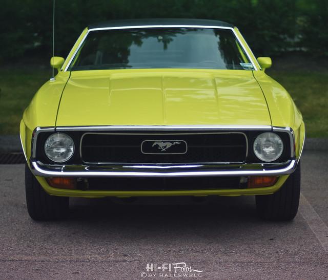 Mustang Grande