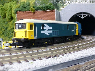 Dapol Class 73 73138 | by railsquid