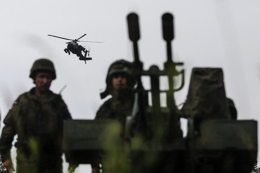 Exercise Puma 2, Battle Group Poland