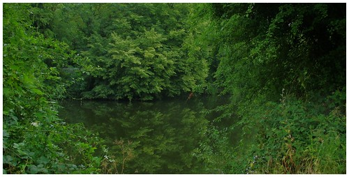 river don doncaster southyorkshire green