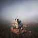 Fog on the top by Kristýna Kvapilová