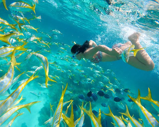 Equipo de snorkel para viajeros