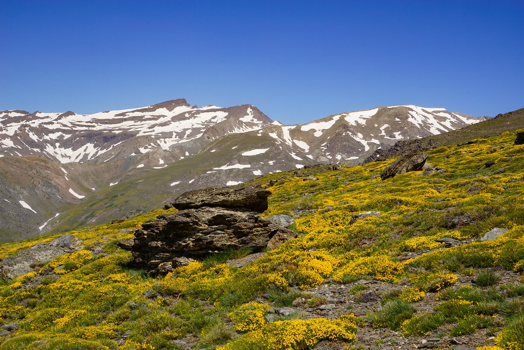 Nationalpark Sierra Nevada