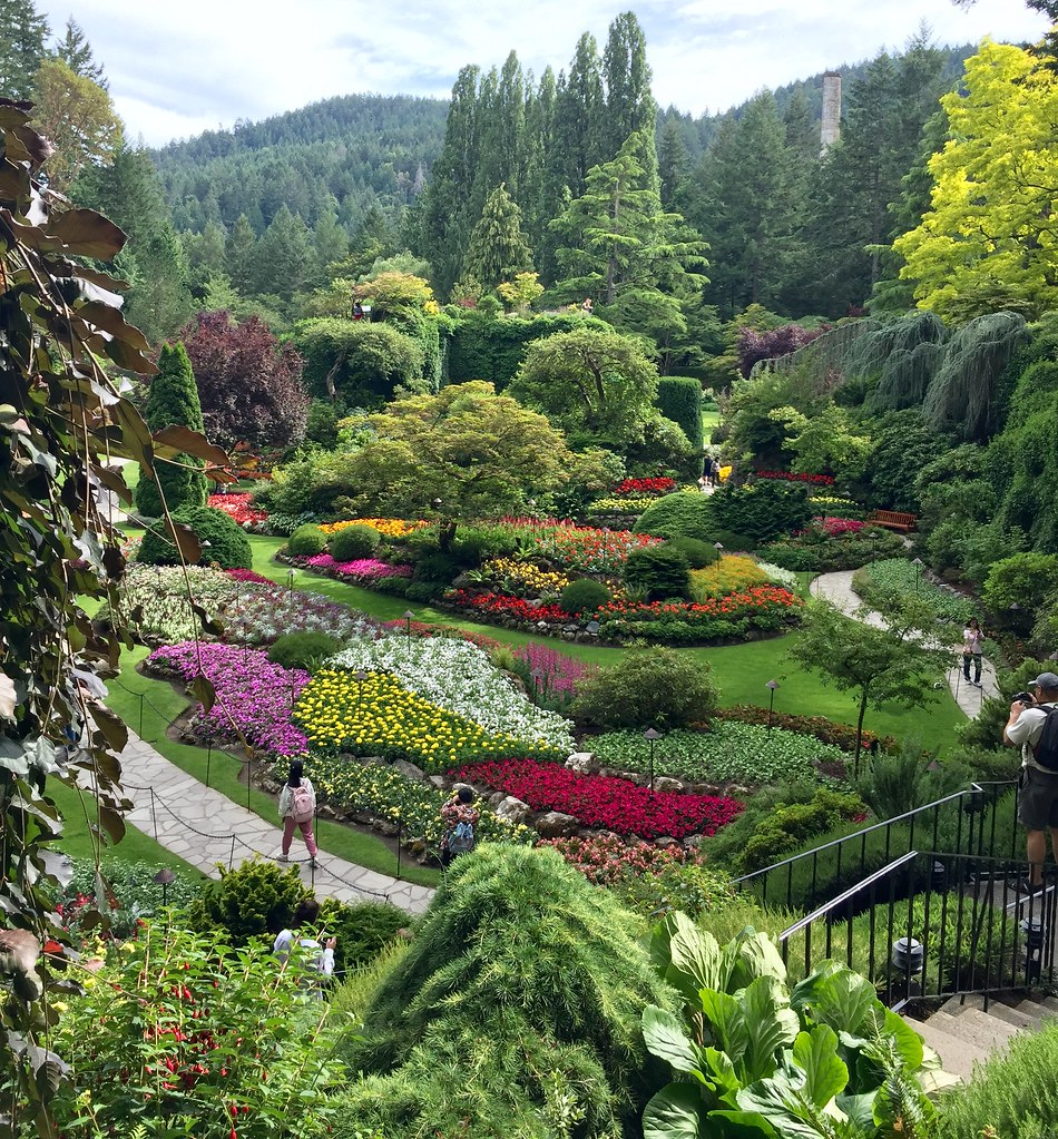 Victoria Island Bc >> The Butchart Gardens Victoria Vancouver Island Bc Flickr
