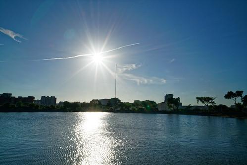 2018 07 jul pond park bade 七月 八德 埤塘 公園 日落 sunset 星芒 flare sun 太陽 yzu