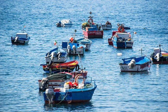 Fishing Boats In The Harbour.jpg