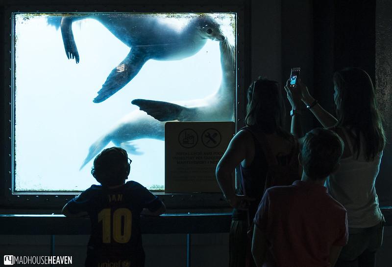 Barcelona Zoo - 0051