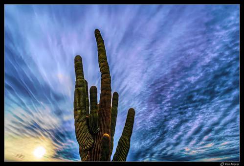 arizona clouds cloudscape cloudy desert estrellla goodyeararizona kenmickelphotography landscape landscapedesert outdoors sky backlighting backlightingphotography backlit backlitphotography nature photography goodyear unitedstates us