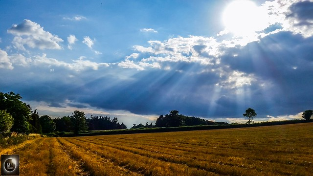 Crepuscular Rays 16/07/18