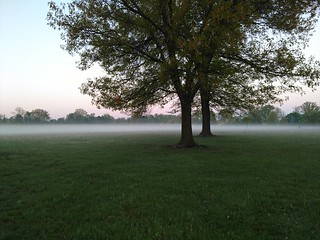 Lansing, Michigan - Frances Park   by Darrell Harden