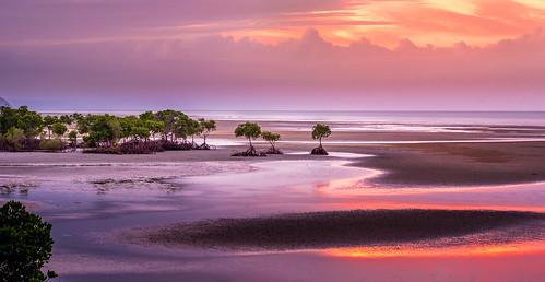 lowtide sky beach sand sunset mangroves clouds