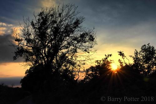 barrypotter edenmedia nikon d7200 nikonflickrtrophy sunset