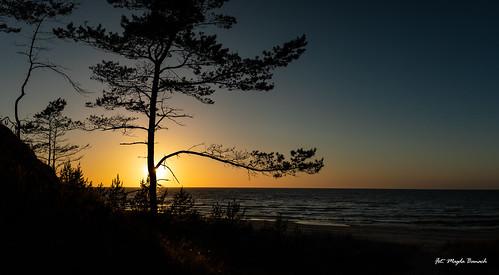 balticsea canon canoneos5dmarkiv horizon tamronsp2470mmf28divcusdg2 blue bluesky colors landscape lato natura nature niebo outdoor outside plants poland sand sea sky sun sunset view water wieczorem yellow zachódsłońca
