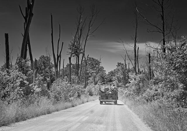Michigan back road.