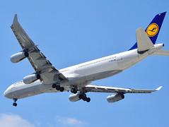 Lufthansa Airbus A340-300 D-AIGZ SAN/KSAN