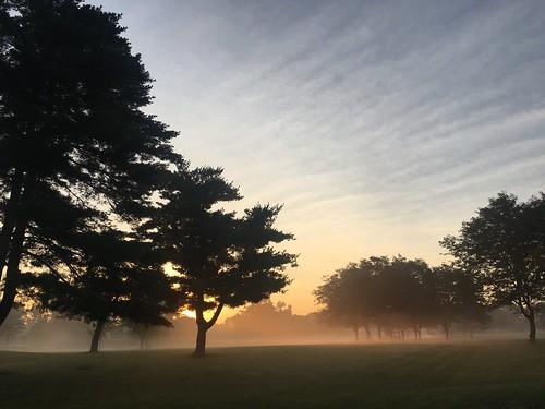 fog myst columbus ohio golfcourse sunrise