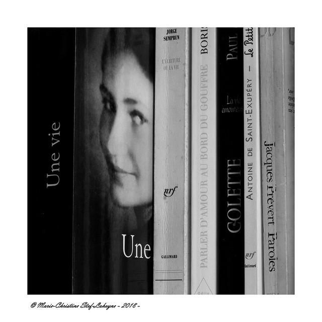 Memories ... Tribute to Simone Veil