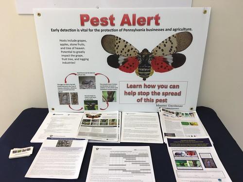 Pennsylvania pest alert | by DanCentury