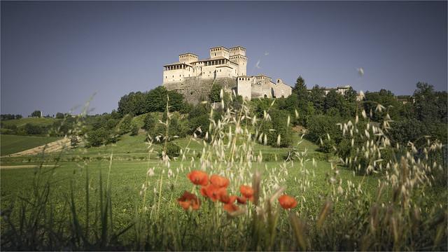 _DSC7093 Torrechiara - Emilia-Romagna / Italia