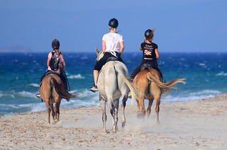 Three Horses on the beach | by Andrew_D_Hurley