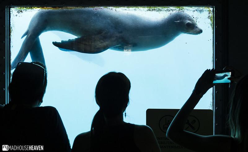Barcelona Zoo - 0036