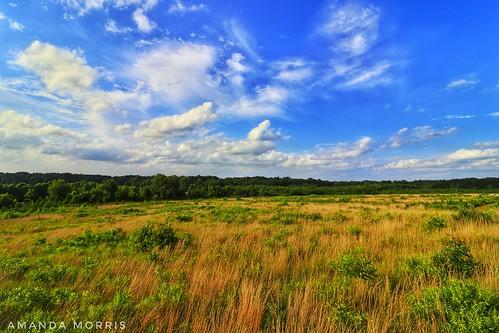 Morgan Hill Overlook