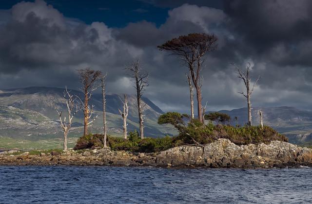 Loch Assynt Island.