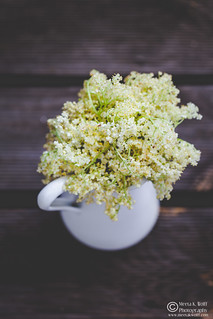 Elderflower Cordial by Meeta K. Wolff-0127 | by Meeta Wolff @ What's For Lunch, Honey?
