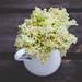 Elderflower Cordial by Meeta K. Wolff-0127