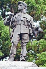 a Kiwi digger