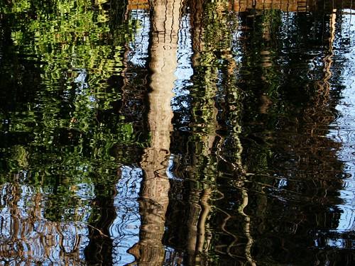 trees sky london nature water reflections canonefs1855mm valerie merton morden specnature canoneos400d ravensburypark january07 pearceval