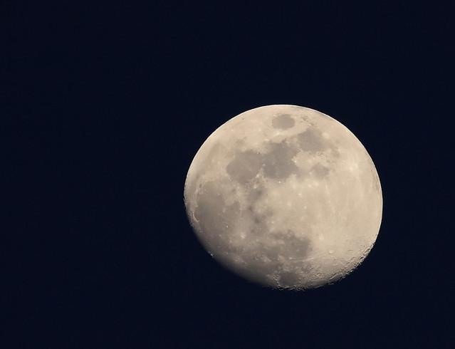 A West River Moon
