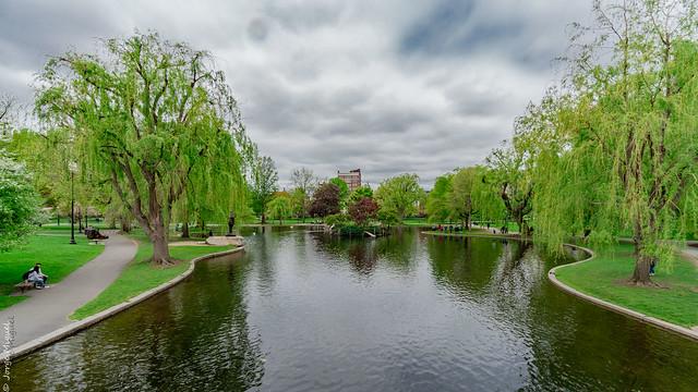Public Garden, Boston, Massachusetts - USA - 00172