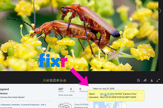 Flickr Fixr with extended date+time info and search link in mouseover