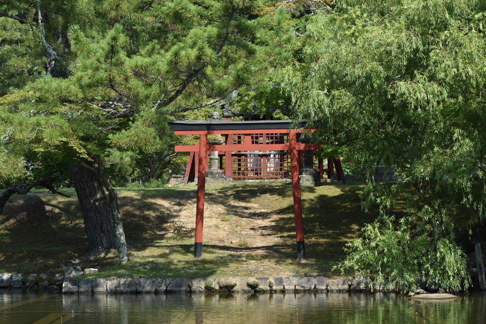 Nara - Todai-ji - un torii sur une île, menant sans doute à un sancturaire