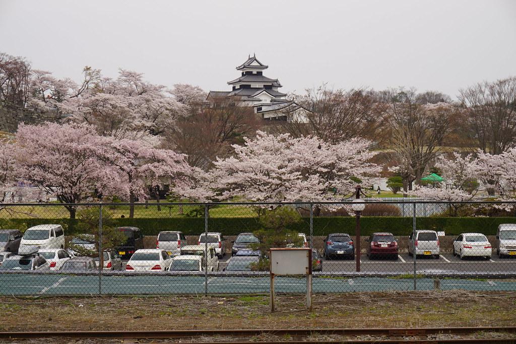 小峰城桜並木