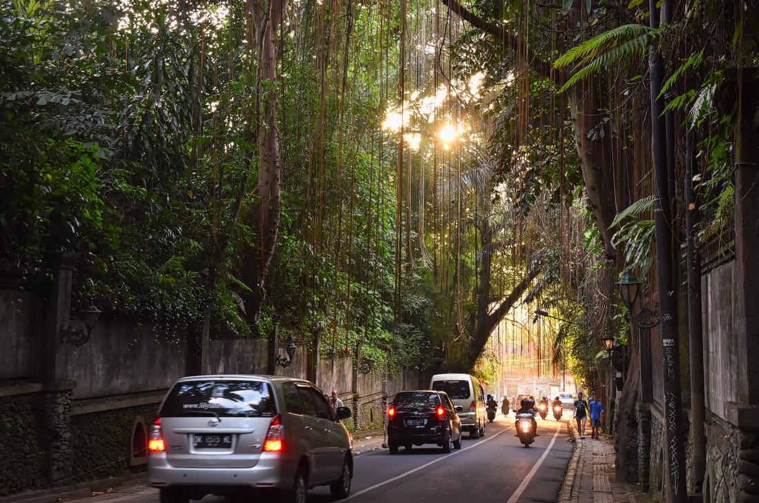 Bali-Ubud-(15)