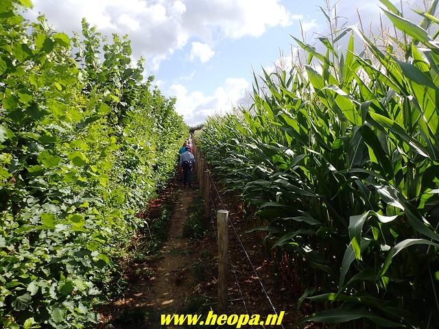 2018-08-10         2e dag          Heuvelland       31 Km  (58)
