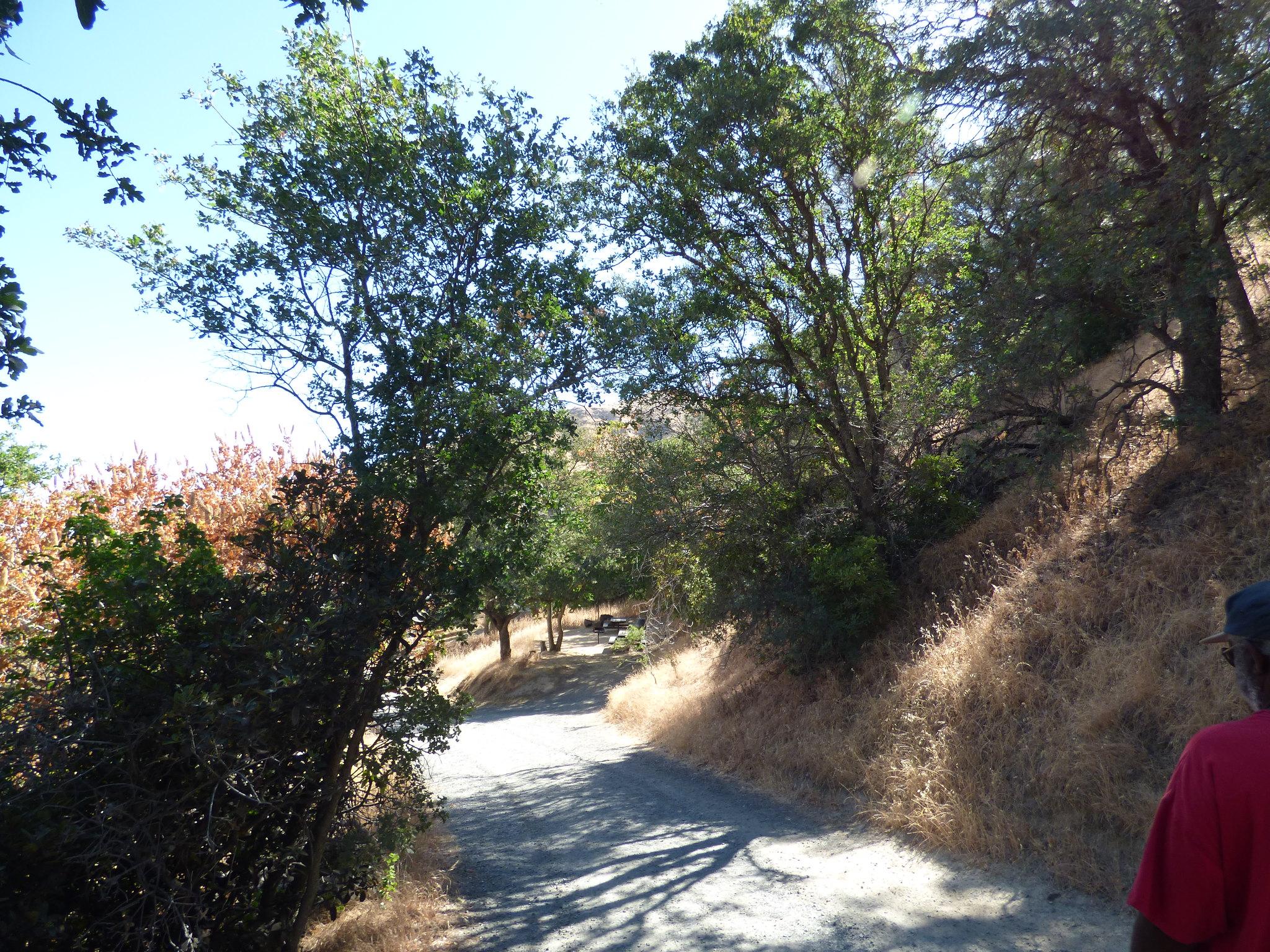 2018-06-22 - A short walk through Black Diamond Regional Park