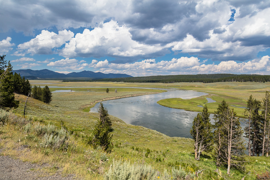 Summer in Hayden Valley and Yellowstone River | NPS / Jacob