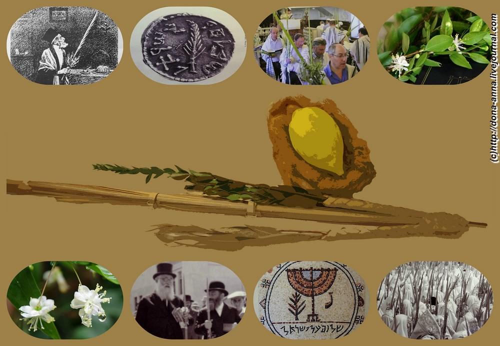 Sukkot-collage-a