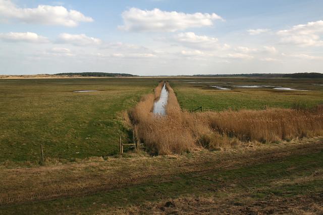 Marshes near Holkham