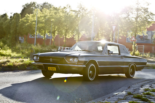 clay fordmotorcompanydearbornmichiganusa sunsetattack 1966 fordthunderbirdmodel63ctownhardtop flairbird cf fordthunderbird sunset artyimpression oddvehicle oddtransport rarevehicle simplyblack groningenthenetherlands thenetherlands ae5341 sidecode1 afeastformyeyes aphotographersview autofocus artisticimpressions alltypesoftransport anticando blinkagain beautifulcapture bestpeople'schoice bloodsweatandgear gearheads creativeimpuls cazadoresdeimágenes carscarscars canonflickraward digifotopro damncoolphotographers digitalcreations django'smaster friendsforever finegold fandevoitures fairplay greatphotographers peacetookovermyheart hairygitselite ineffable infinitexposure iqimagequality interesting inmyeyes lovelyflickr livingwithmultiplesclerosisms myfriendspictures mastersofcreativephotography niceasitgets photographers prophoto photographicworld planetearthtransport planetearthbackintheday photomix soe simplysuperb slowride showcaseimages simplythebest thebestshot thepitstopshop themachines transportofallkinds theredgroup thelooklevel1red vividstriking wheelsanythingthatrolls yourbestoftoday wow