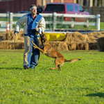 Police K-9 Challenge at the 2018 Dream Ride Experience