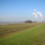 Blick auf das Deichvorland der Walsumer Rheinaue