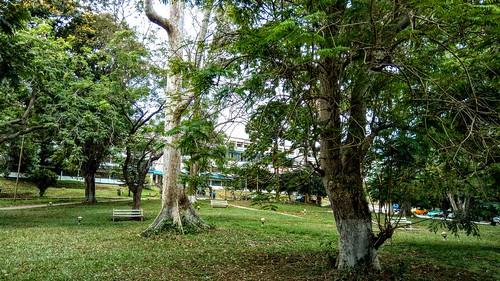Casely Hayford Park