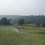 Wiese in der Heisinger Aue nach dem höchsten Stand des Ruhrhochwassers